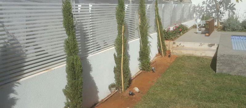 גדר לחצר